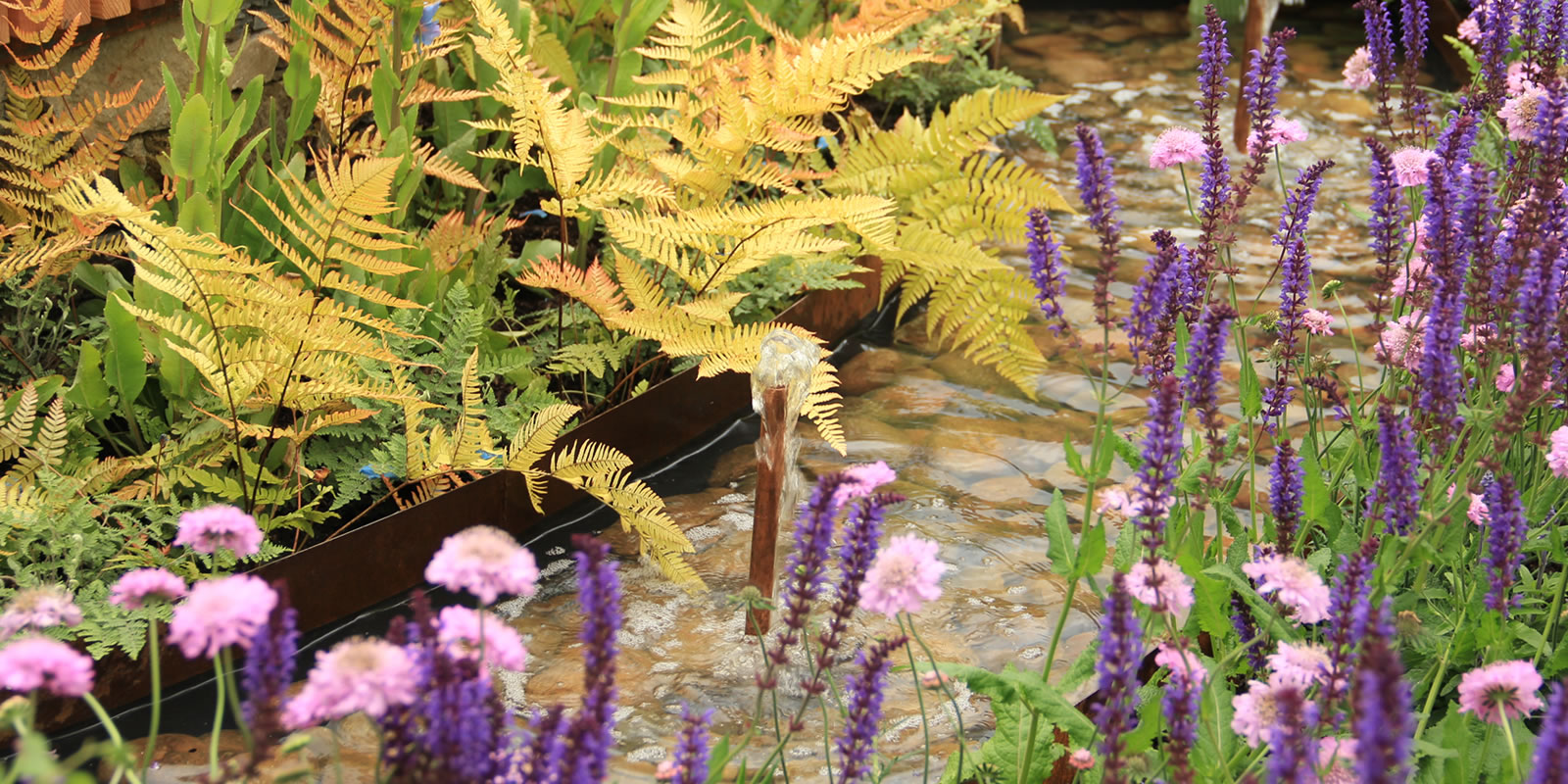 Bloom-Gold-2018-Garden-Designer-14