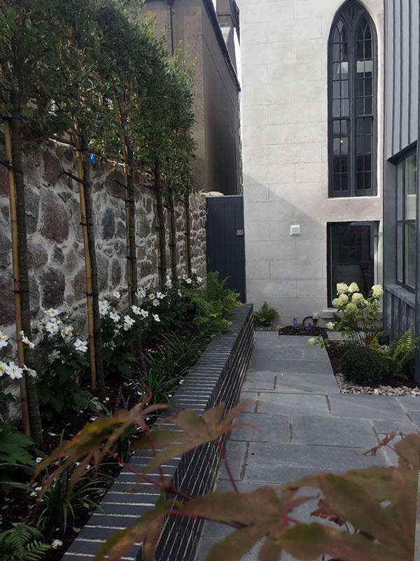 Garden-Landscape-Design-Georges-Avenue-DunLaoghaire-2