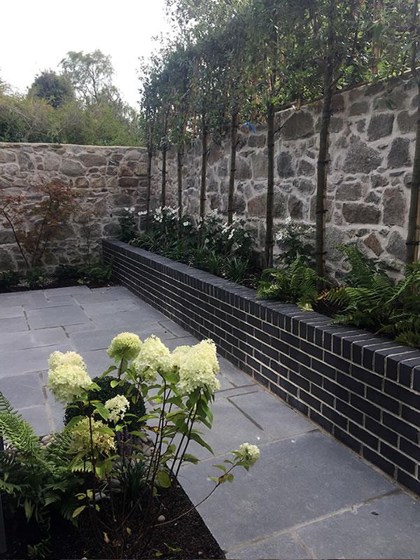 Garden-Landscape-Design-Georges-Avenue-DunLaoghaire-3