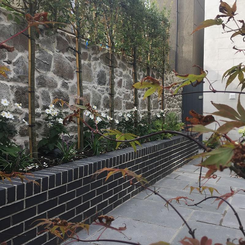 Garden-Landscape-Design-Georges-Avenue-DunLaoghaire-5