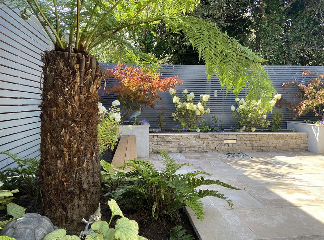 Garden-Design-Construction-Glenageary-4